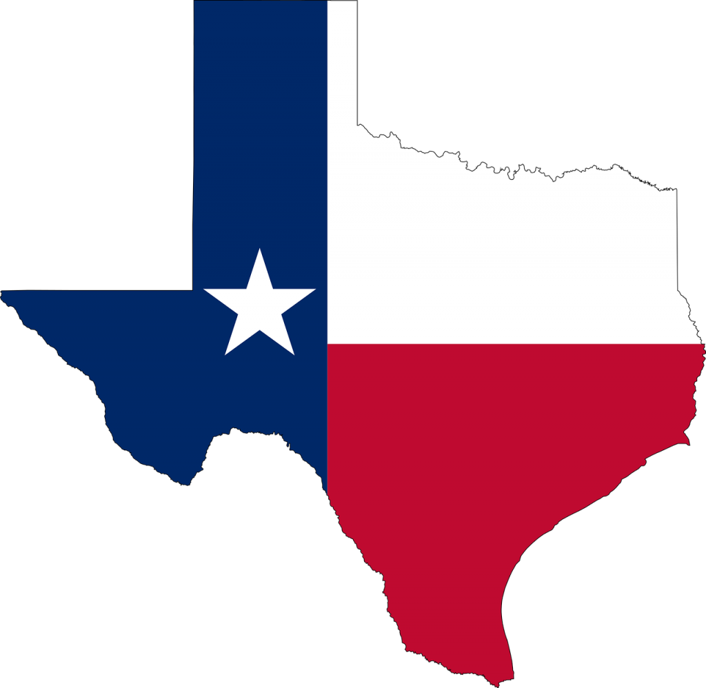 State of Texas outline with Texas Flag design